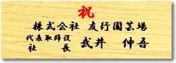 木目 ヨコ